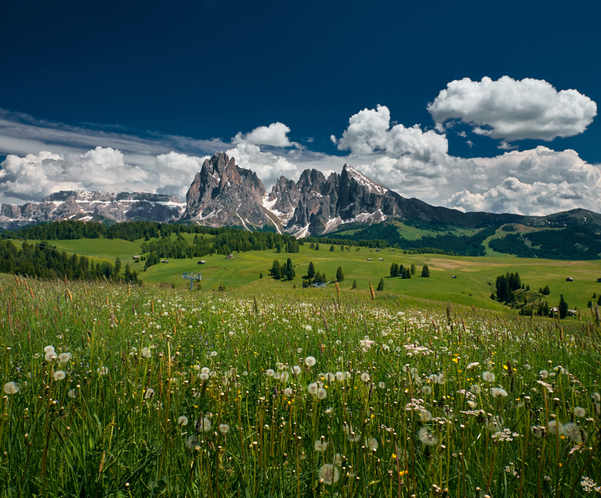 alpe di siusi estate